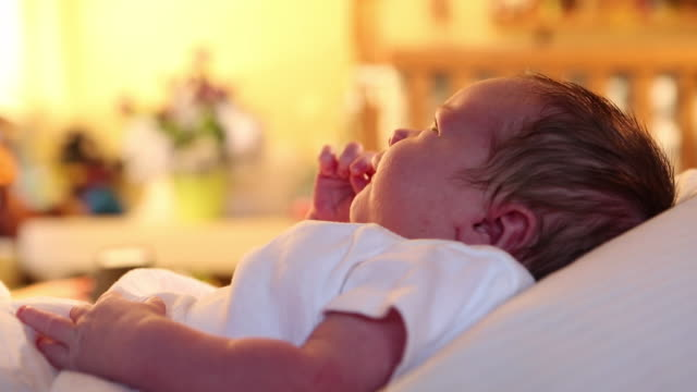 cu shot of newborn lying down / lamy, new mexico, united states - lamy new mexico stock videos and b-roll footage