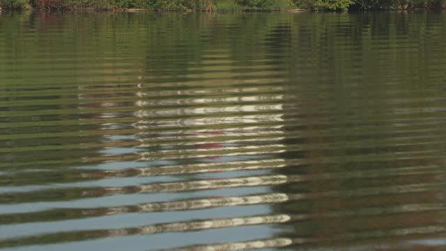 vidéos et rushes de ms tu aerial shot of ohio river and sawyer-curtis house / little hocking, ohio, united states - rivière ohio