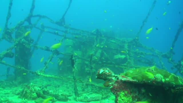 ms ts shot of oldest boat in underwater / halavili, maldives - old diving suit stock videos and b-roll footage