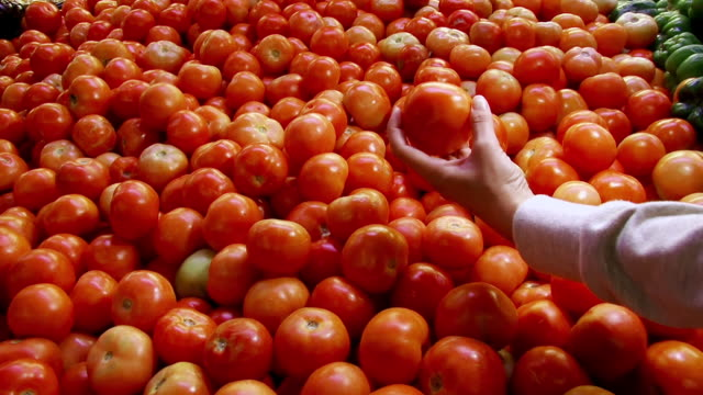 CU POV Shot of one person picking up tomato in fruit and vegetable store / Western Cape, South Africa