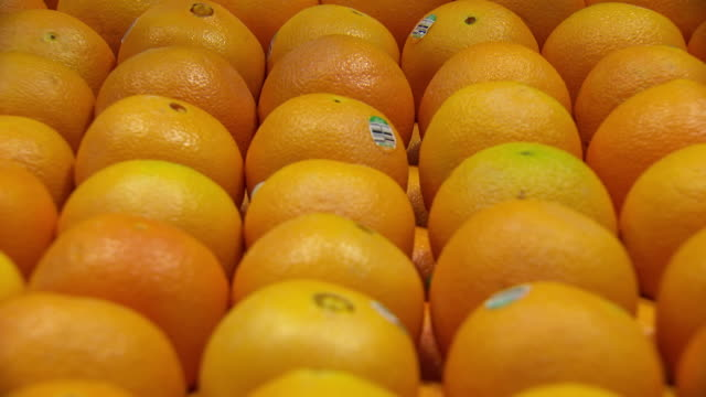 ecu tu shot of oranges / sydney, new south wales, australia - orange stock videos & royalty-free footage