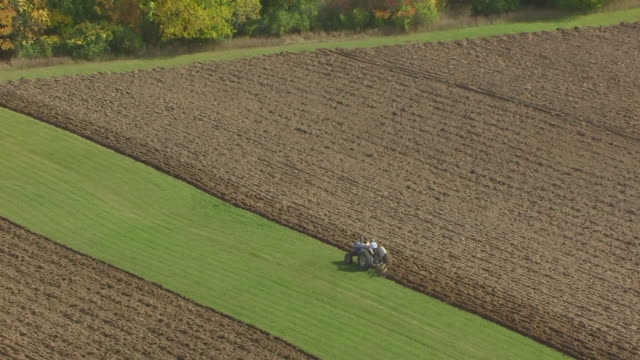 vídeos de stock e filmes b-roll de cu aerial shot of orbit around farmer riding tractor and plowing field as seagulls flock around and pull out to reveal of road and surrounding farmland / wisconsin, united states - trator