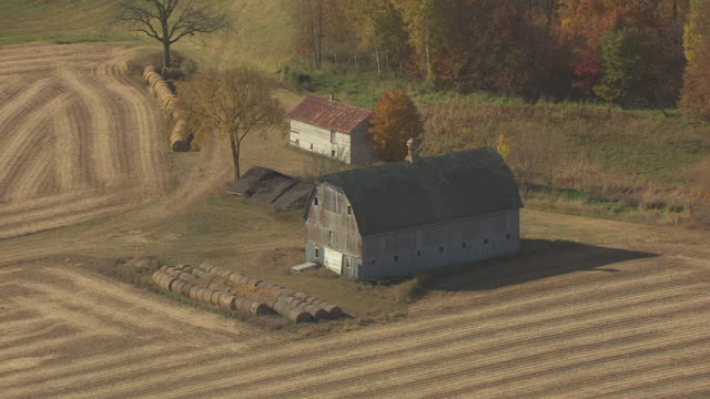 ms aerial shot of orbit old white barn with hay bails in morrison county / minnesota, united states - hay bail stock videos & royalty-free footage