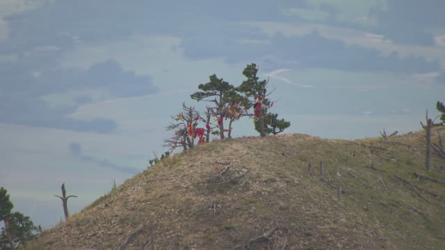 ms aerial shot of orbit trees with colorful fabric tied to them on ridge of bear butte in meade county / south dakota, united states - butte rocky outcrop stock videos & royalty-free footage