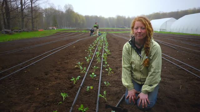 MS SLO MO Shot of Organic farmers plant rows of vegetables, portrait of young woman in front side / Chatham, Michigan, United States