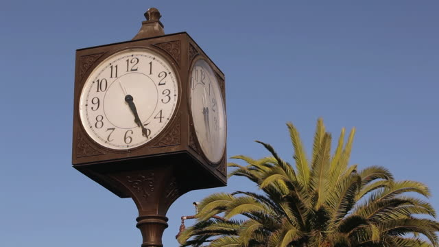 ms shot of outdoor clock with coconut tree / camarillo, california, united states - camarillo stock videos & royalty-free footage
