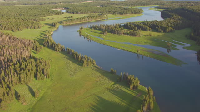 ms aerial td shot of over head track of river leading to yellowstone lake in hayden valley in yellowstone national park / wyoming, united states - river yellowstone stock videos and b-roll footage