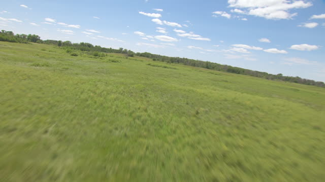 ms aerial la shot of over scrub and grass at sheyenne national grassland / north dakota, united states - national grassland stock videos & royalty-free footage