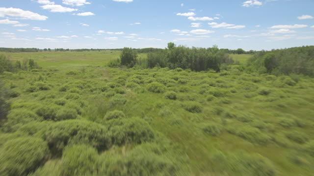 cu aerial la shot of over scrub and grass at sheyenne national grassland / north dakota, united states - national grassland stock videos & royalty-free footage