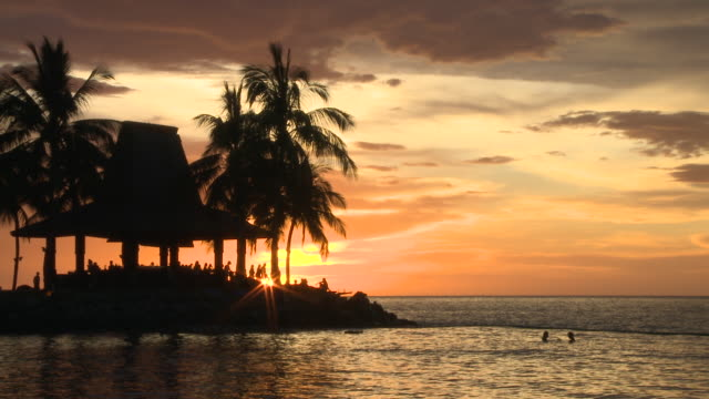 MS Shot of Palm trees and people at sunset / Kota Kinabalu, Sabah, Malaysia