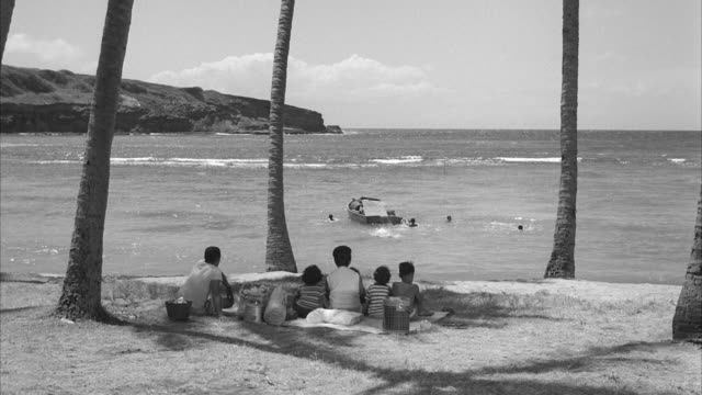 ms shot of palm trees at half moon bay beach with people on ground at honolulu hawaii - 1959 stock videos and b-roll footage