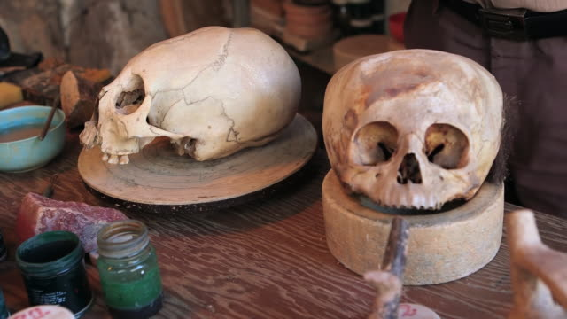 cu shot of paracas skulls / paracas, nazca, peru - skull stock videos and b-roll footage