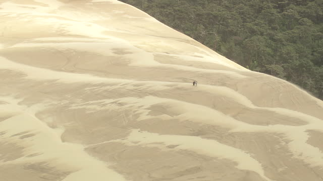 ms aerial zo shot of people at dune du pilat / aquitaine, france - dune of pilat stock videos and b-roll footage