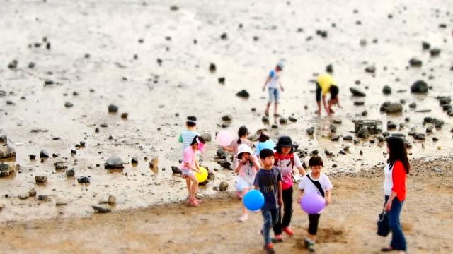 ms t/l shot of people at tandohang port mud flat at sunset / ansan, gyeonggi-do, south korea - sun visor stock videos & royalty-free footage