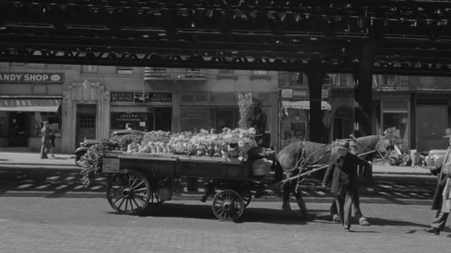 ws shot of people buying flower from horse cart vendor and shops at back - florist stock videos and b-roll footage