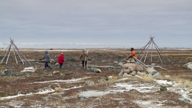ws shot of people gathering wooden poles for building teepees / arviat, nunavut, canada - inuit stock videos & royalty-free footage