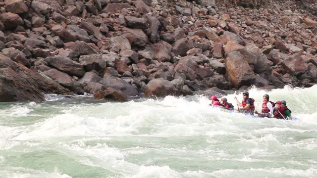 vídeos de stock, filmes e b-roll de ms ts shot of people rafting in river, ganges river / rishikesh, uttarakhand, india - rishikesh