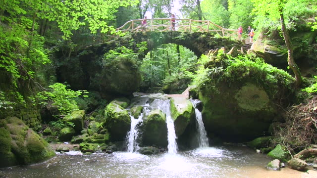 ms shot of people roaming at schiessentumpel, mullerthal / beaufort, echternach, luxembourg - footbridge stock videos & royalty-free footage