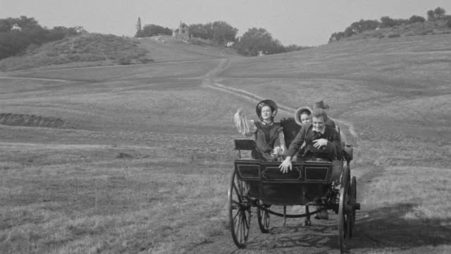 ws shot of people sited in horse cart which runs through heath - auseinander stock-videos und b-roll-filmmaterial