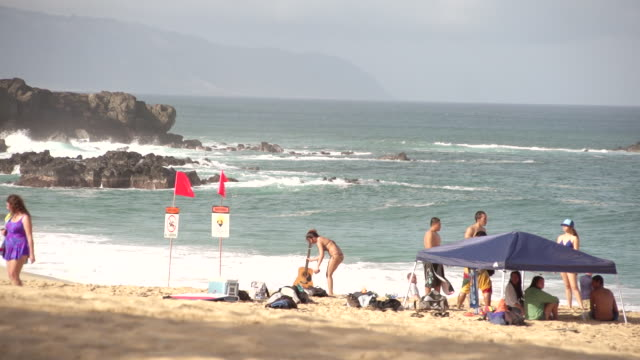 ms shot of people walking around on beach with waves crashing and girl holding guitar / oahu, hawaii, united states - wiese stock videos & royalty-free footage