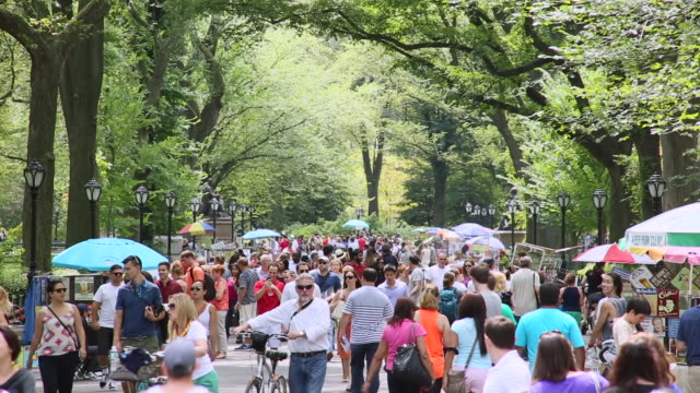 MS TU Shot of people walking down mall surrounded by summer trees central park / New York, United States