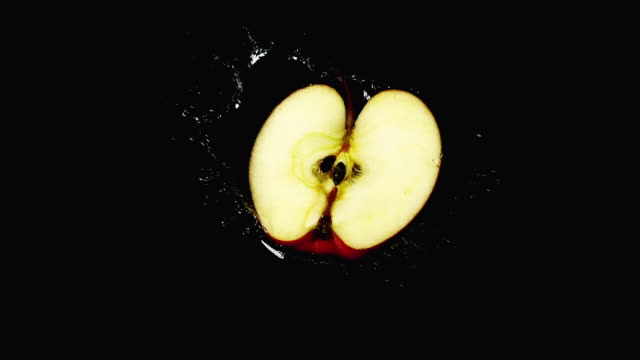 cu slo mo shot of pink lady apple, malus domestica, fruit falling on water against black background / calvados, normandy, france - calvados stock-videos und b-roll-filmmaterial