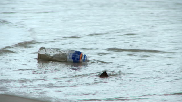 vídeos de stock e filmes b-roll de cu shot of plastic bottle being swept onto beach / western cape, south africa - poluição de água