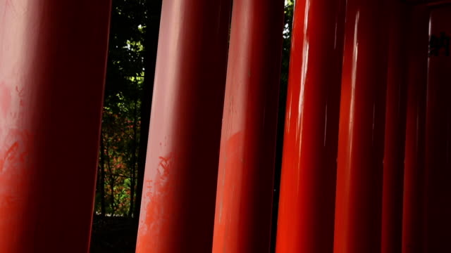 vidéos et rushes de cu tu shot of poles of inari gate / fushimi ku, kyoto, japan. - portail