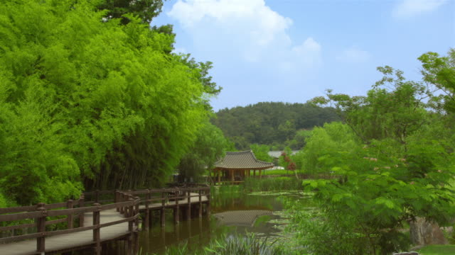 shot of pond and promenade at juknokwon(bamboo garden) - damyang stock videos & royalty-free footage