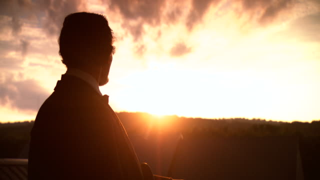 MS Shot of President Abraham Lincoln looking at sunset / Clear Spring, Maryland, United States