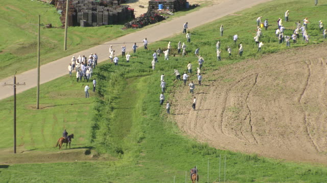 ms aerial shot of prisoners cutting grass, guards on horseback / angola, louisiana, united states - prisoner stock videos and b-roll footage
