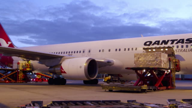 ms tu t/l shot of qantas plane loading laggage for early morning flight / sydney, pyrmont new south wales, australia - container stock videos & royalty-free footage