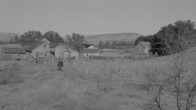 ws shot of ranch house in rural countryside, horseman riding toward  house - ranch house stock videos & royalty-free footage