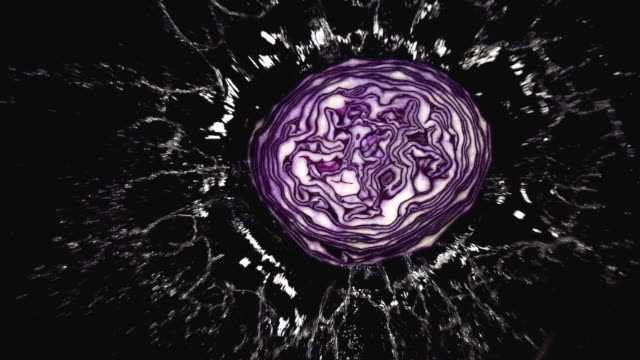 cu slo mo shot of red cabbage, brassica oleracea, vegetable falling on water against black background / calvados, normandy, france - calvados stock videos and b-roll footage