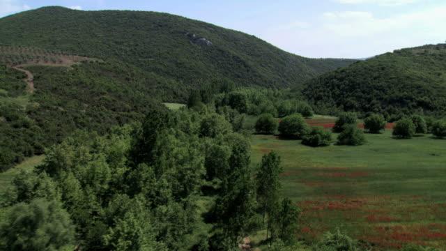 ws aerial shot of red field in halkidiki peninsula / halkidiki, macedonia, greece  - macedonia country stock videos and b-roll footage