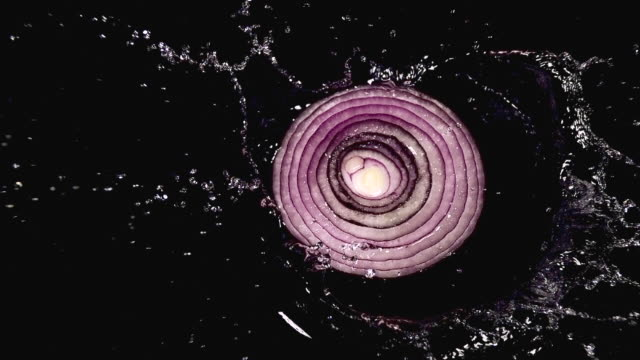 CU SLO MO Shot of Red Onion, allium cepa, Slice falling on Water against black Background / Calvados, Normandy, France