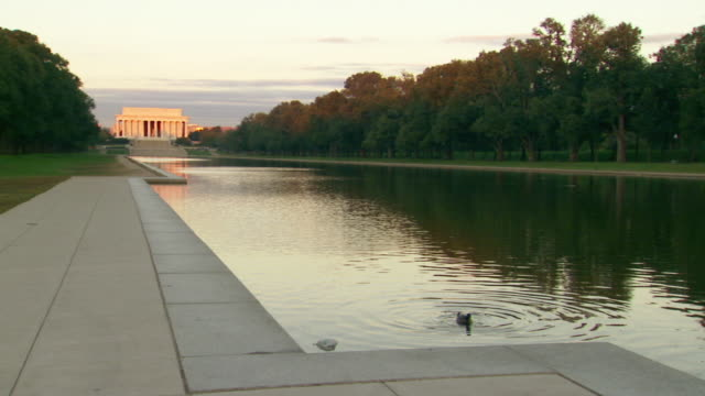 WS Shot of Reflecting Pool with duck swimming and Lincoln Memorial / Washington, District of Columbia, United States