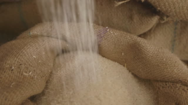 cu td tu shot of rice being poured slowly into sack / new delhi, india - reis grundnahrungsmittel stock-videos und b-roll-filmmaterial