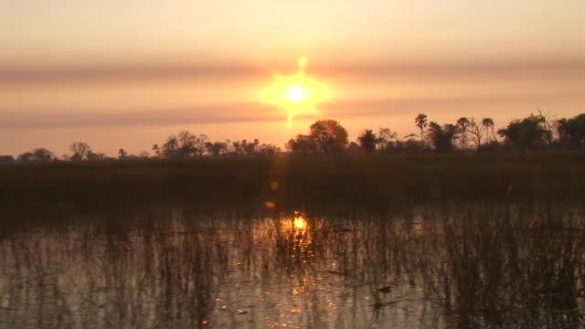 vidéos et rushes de ms pov shot of river as birds flying in sky at sunset / ghanzi district, ghanzi district, botswana - 1 minute et plus
