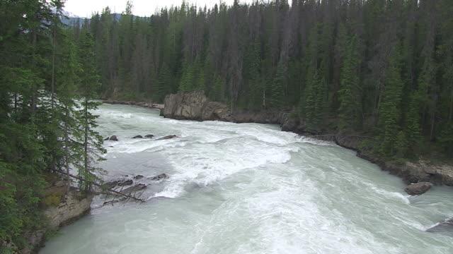 CU Shot of river flowing through trees at Natural Bridge / Yoho Nationalpark, British Columbia, Canada