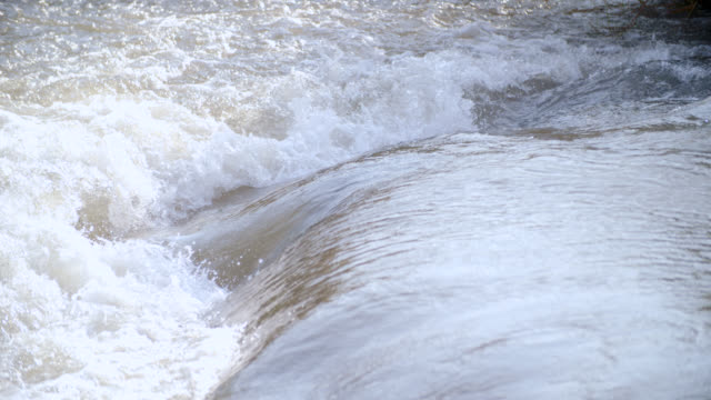 cu shot of river / kruger national park, mpumalanga, south africa - provinz mpumalanga stock-videos und b-roll-filmmaterial