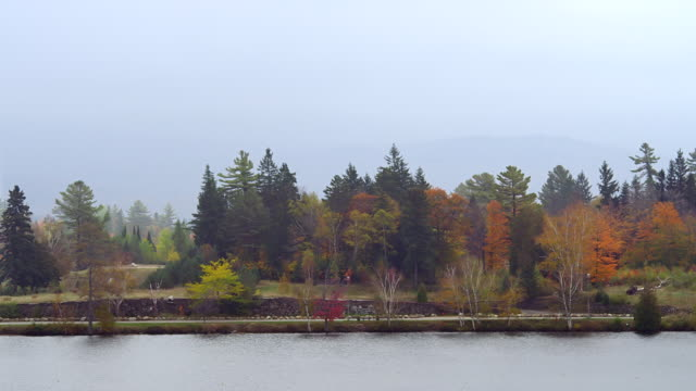 ms shot of road alongside of lake with trees and haze covering mountain / lake placid, new york, united states - lake placid town stock videos and b-roll footage
