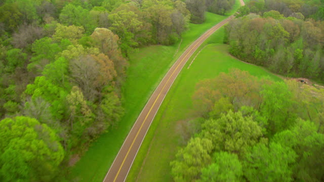 MS AERIAL Shot of road in countryside with trees / Natchez, Mississippi, United States