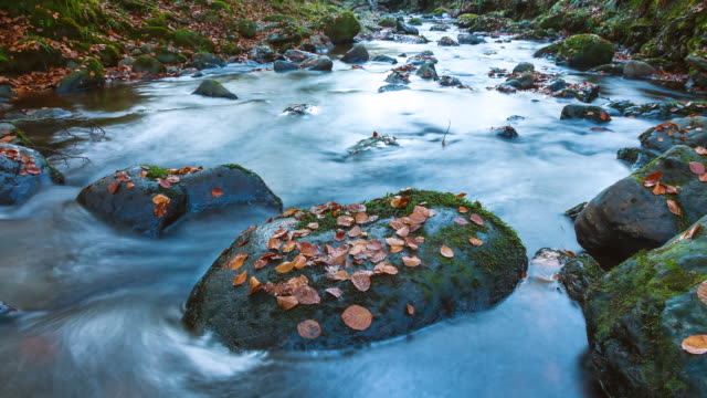 MS T/L TU Shot of Rocky with small river at forest, Saja-Besaya Natural Park / Saja, Cantabria,  Spain