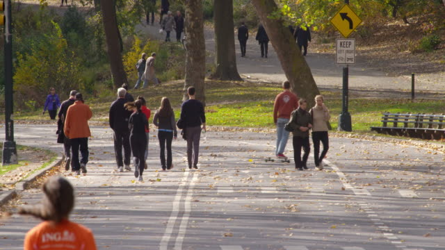 Shot of runners, skateboarders, pedestrians  and people on bicycles going along a street inside Central Park, New York City on a fall day