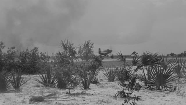 ws shot of runway in tropic field and air cobra approaching and taking off - 熱帯の低木点の映像素材/bロール