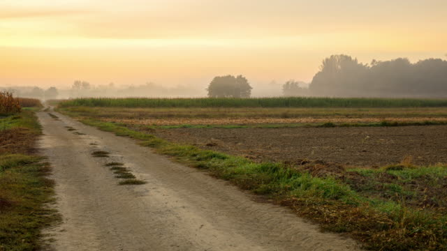 T/L 8K shot of rural fields in morning mist