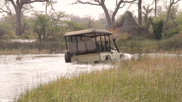 ms pan shot of  safari vehicle driving in water / ghanzi district, ghanzi district, botswana - wiese stock videos & royalty-free footage
