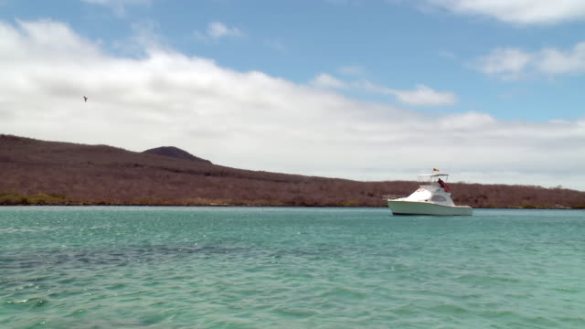ms shot of sailing boat sailing in ocean / cantons, galapagos, ecuador - galapagos islands stock videos & royalty-free footage