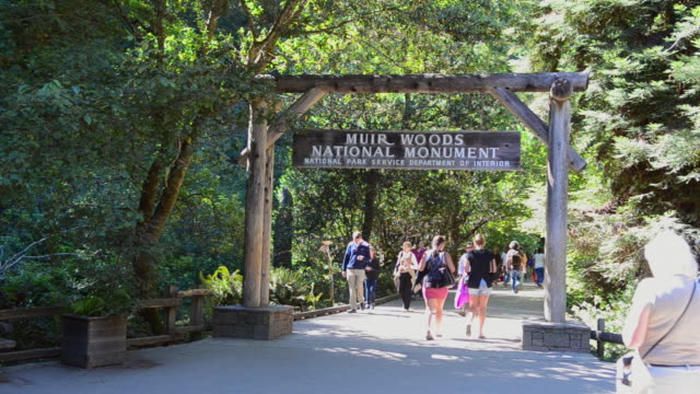 MS Shot of San Francisco entrance sign with wonderful giant Redwoods and tourists / Muir Woods, California, United States